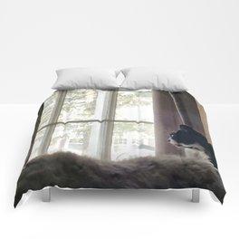 Wistful Comforters