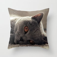 Dieslchen Throw Pillow