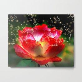 """""""Rose Delight"""" Metal Print"""