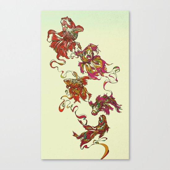 Tanged Veiltail Rainbow Canvas Print