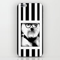 ewok iPhone & iPod Skins featuring Ewok. A dogs Life  by Kristy Patterson Design
