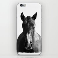 horse iPhone & iPod Skins featuring Horse by Amy Hamilton