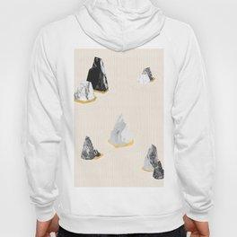 Rock Formation No.1 Hoody