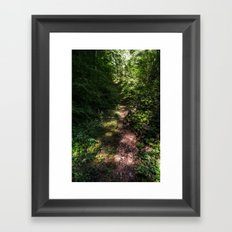 Get Lost Framed Art Print