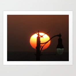 Sunset with Pelican RB Ca. 9-21-18 Art Print