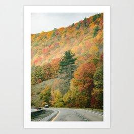 Fall Drive 003 Art Print