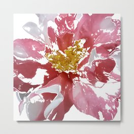 Pink and White Camellia Metal Print