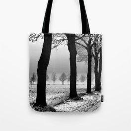 Winter Landscape (Winter Trees, Setting Sun) Tote Bag