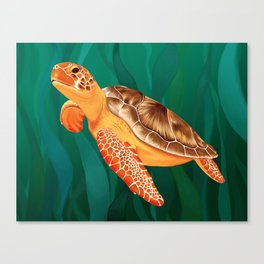 Katma the Green Sea Turtle Canvas Print