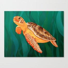 Katma the Green Sea Turtle Canvas Print