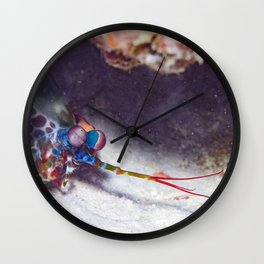 """Welcome to my lair"" mantis shrimp Wall Clock"