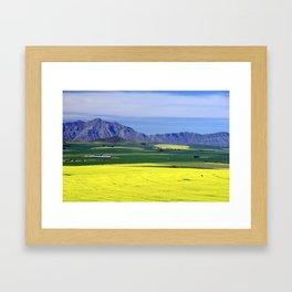 Canola fields Framed Art Print