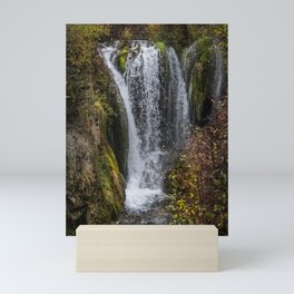 Upper Roughlock Falls Mini Art Print