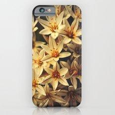 Celebrate Life iPhone 6s Slim Case