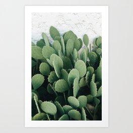Cacti Desert Art Print