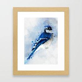 Watercolour blue jay bird Framed Art Print