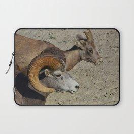 Big horn sheep couple in Jasper National Park Laptop Sleeve