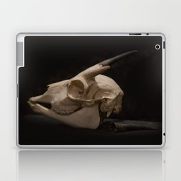 White Tail Deer Skull Laptop & iPad Skin