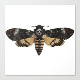 Moth of life Canvas Print