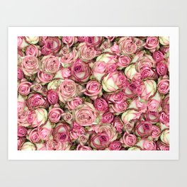 Your Pink Roses Art Print