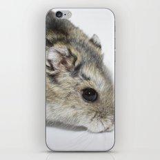 cheesecake (my hamster)  iPhone & iPod Skin