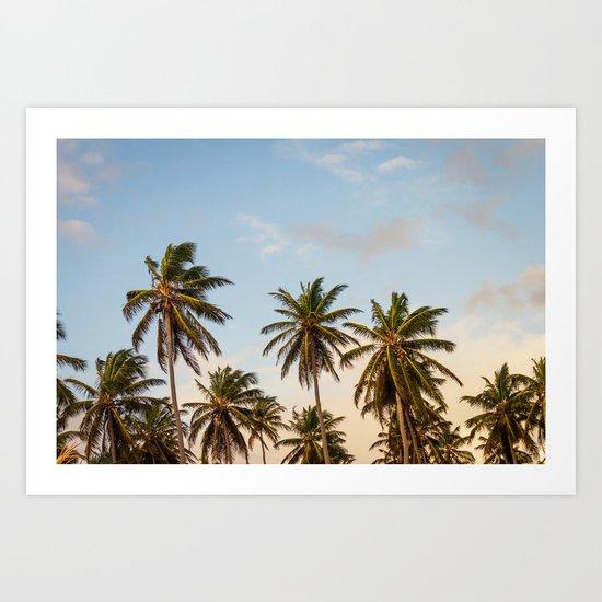 Sky beach palmier Art Print