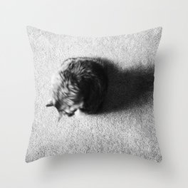 Aesthetic Black And White Cat 2 Throw Pillow