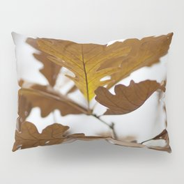 Canadian Prairies 4 Pillow Sham