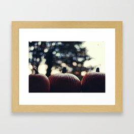 Haddonfield 1978 Framed Art Print