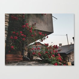 PHOTOGRAPHY - Corner roses Canvas Print