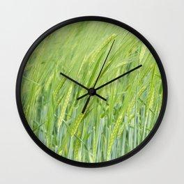 Ears of corn Wall Clock