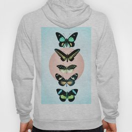 Butterfly parade Hoody