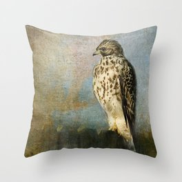 On The Fence - Juvenile Red Shouldered Hawk Throw Pillow