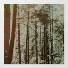 Oregon Woods Canvas Print