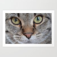 arya Art Prints featuring Cat by Kellie Eickstead