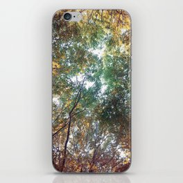Forest 011 iPhone Skin