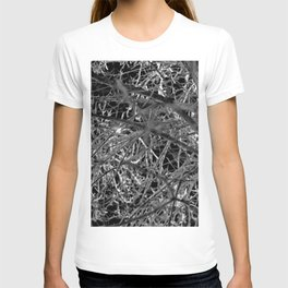 Damen at Night T-shirt