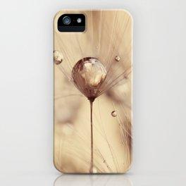 dandelion gold drop iPhone Case