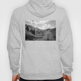 Cache National Forest  Hoody