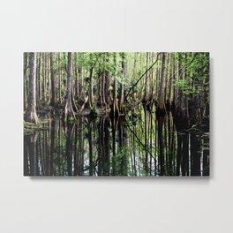 Cyprus Swamp Metal Print