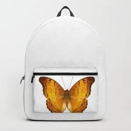 butterfly species Vindula dejone austrosundana Backpack