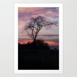A Buck At Sunset Art Print