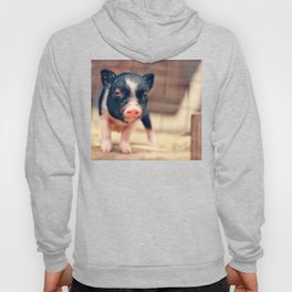 Piebald Pig puppy for Pig Lovers                                        Hoody
