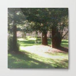 Tree and Sun  Metal Print