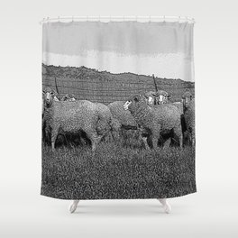 Black & White Sheep in a feild Pencil Drawing Photo Shower Curtain