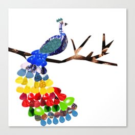 pavo real Canvas Print