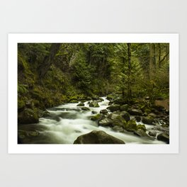 Rios de Oregon 1 Art Print