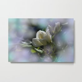 white rosebuds - last summerdays Metal Print
