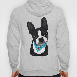Tropical Boston Terrier Boy Hoody