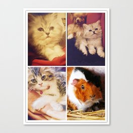 Very cute pets Canvas Print